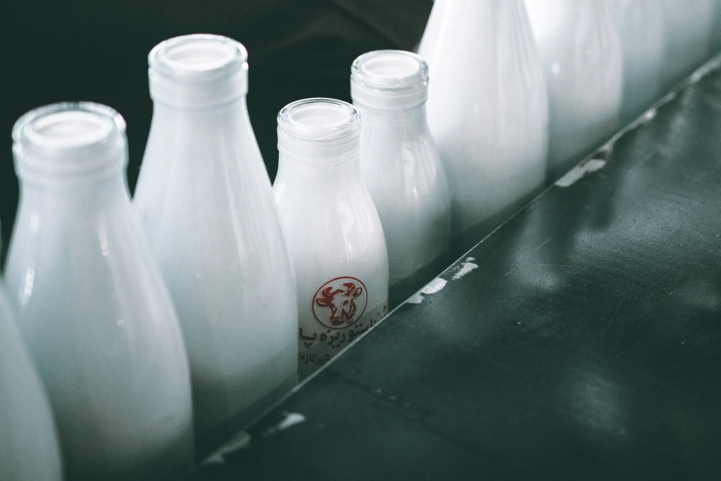 Milk bottles in factory